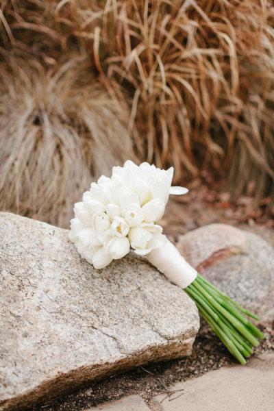 tulipanes5