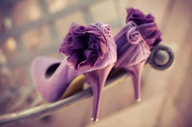 purpura17