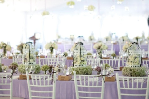 paniculatacelebritystyleweddings